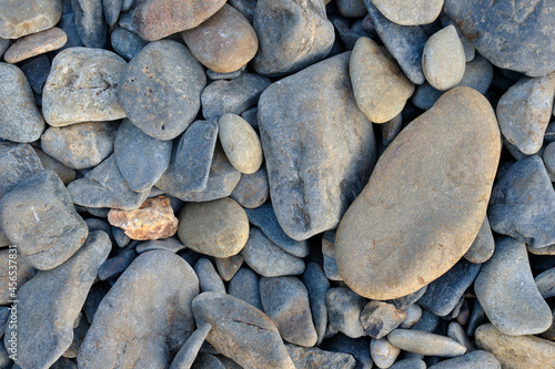 Stampa su Tela Weathered gray stones on a Maine Beach at low tide in late afternoon light