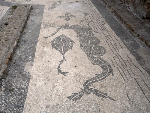 Fotografija envy house mosaic old ancient ostia archeological ruins