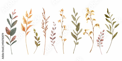 Watercolor vector set of autumn branches isolated on a white background.