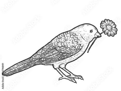 Canvas Print Bird holds in its beak a flower