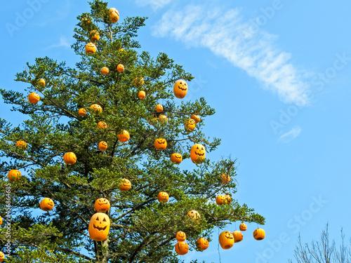 Canvastavla 今年もハロウインの季節がやってきました。飾りつけの準備はOK?