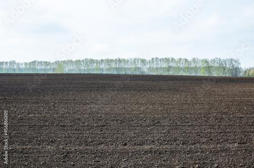 Fototapeta Agricultural land