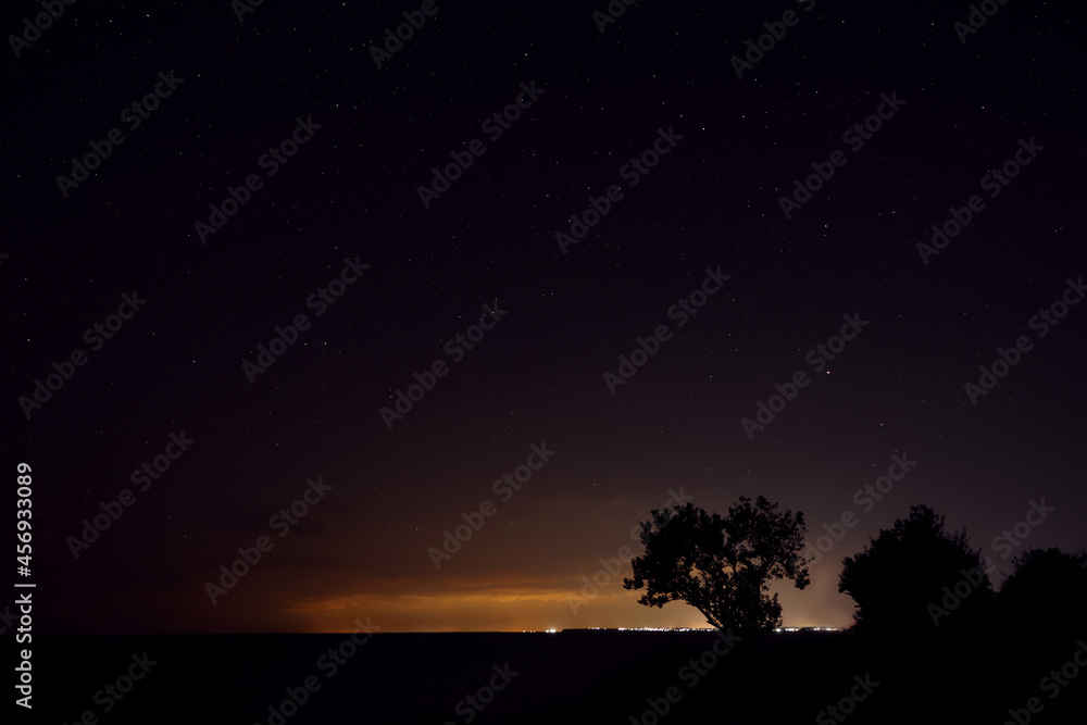 Picturesque view of starry sky at night on seaside