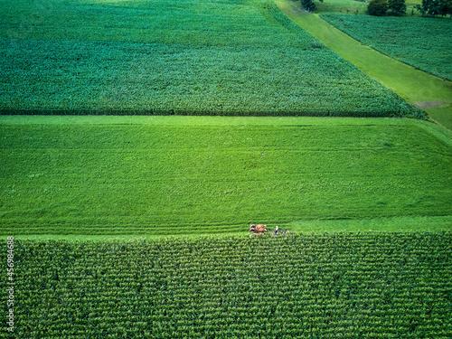 An amish farmer and his four horse plow team plow a corn field seen from an aeri Fototapeta