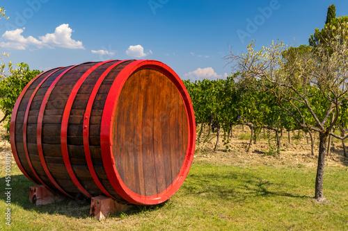 Fototapeta premium Wine barrel in vineyard, Tuscany, Italy