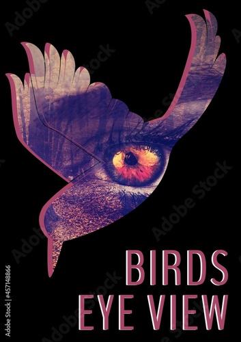 Birds eye view text against eye deign over bird icon against black background