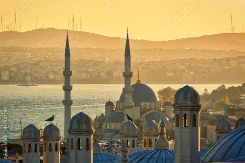 Fotografie, Obraz View from Suleymaniye mosque at sunrise. Istanbul, Turkey, popul