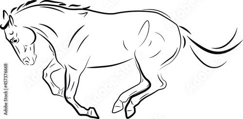 Fotografiet horse galloping ink black drawing