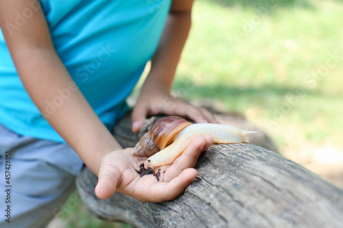 Little boy with snail outdoors, closeup Fototapeta