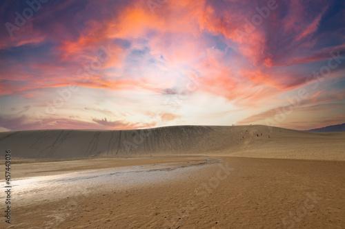 Murais de parede 鳥取砂丘の夕焼け
