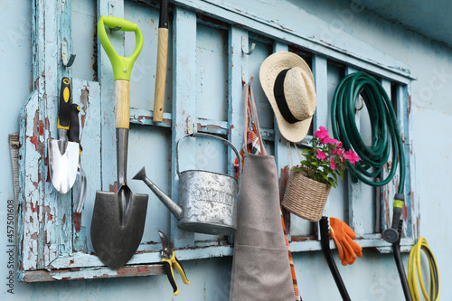 Fotografía Beautiful plant, gardening tools and accessories on shed wall