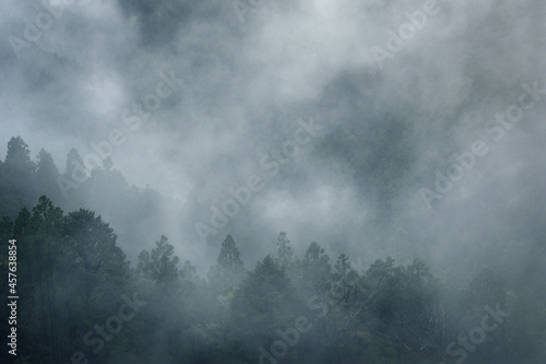 立ち込める霧