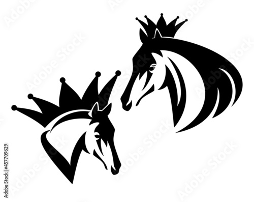 Fototapeta wild mustang stallion wearing king crown - royal champion horse profile head bla
