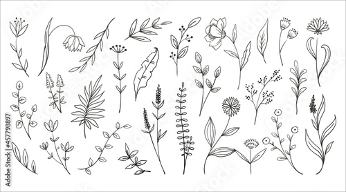 Fotografie, Obraz Doodle wood flowers