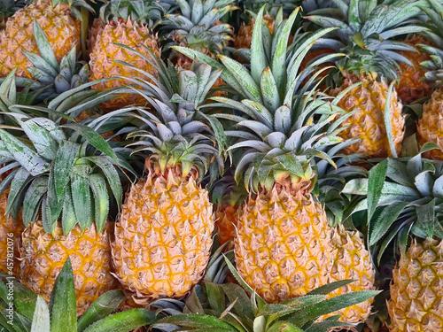 Obraz na plátně Full Frame Pile of Ripe Pineapples for Sale at Market Stall