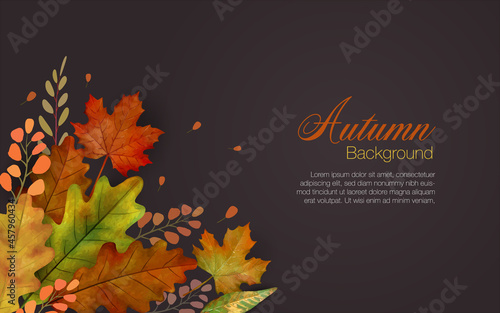 Fotografiet Autum leaves background in brown with colorful group of falling leaves in lower left and copyspace of text area