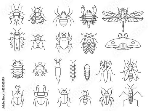 昆虫の線画アイコンセット Fotobehang