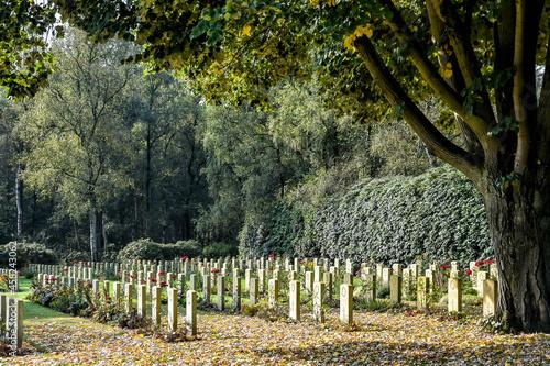 Obraz na plátně Holten Canadian War Cemetery