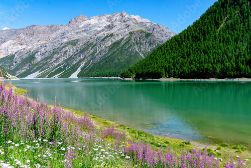 Obraz na plátně Lago di Livigno