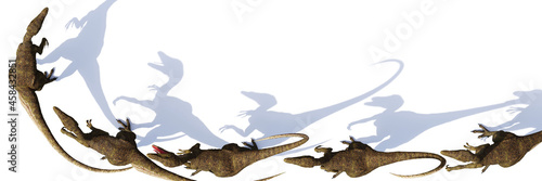 Fotografia Velociraptor group, dinosaurs from the Cretaceous period, isolated on white back