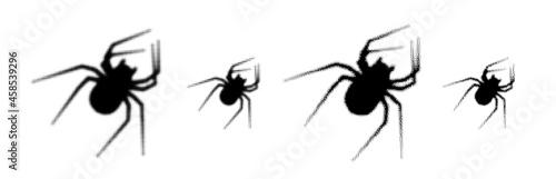 Fototapeta Set of black halftone spider silhouette.