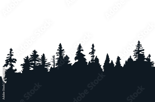 Background with evergreen forest silhouettes