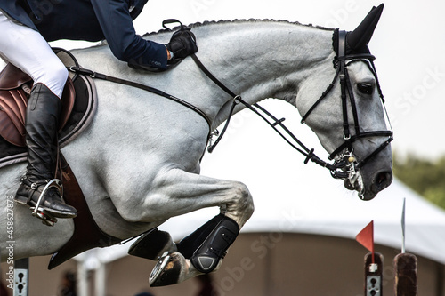Fotografiet Horse Jumping, Equestrian Sports, Show Jumping themed photo.