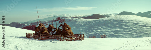 Fototapeta Winter rural scene with snow covered haystacks