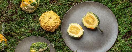 Foto Decorative small pumpkins on grey stoneware plates  on green fresh thyme backgro