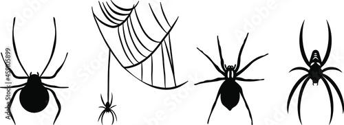 Fotografia, Obraz Vectors of the spiders - Spiderweb