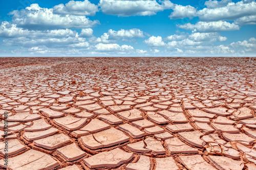 Canvastavla Arid land with dry and cracked ground