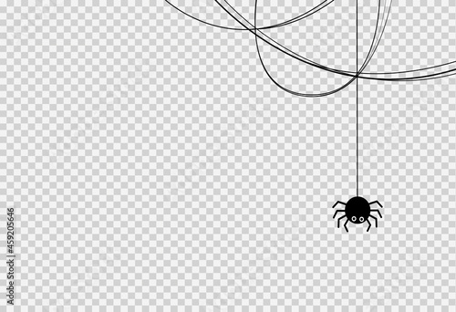 Fototapeta Halloween party background with spider hanging from spiderwebs isolated png or t
