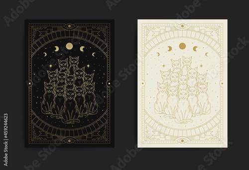 Canvastavla Ten mystical and magical black cats, mythological animals at starry night in eng