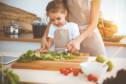 Fotografie, Obraz Happy woman and her daughter making healthy vegan salad and snacks for family feasting in sunny kitchen