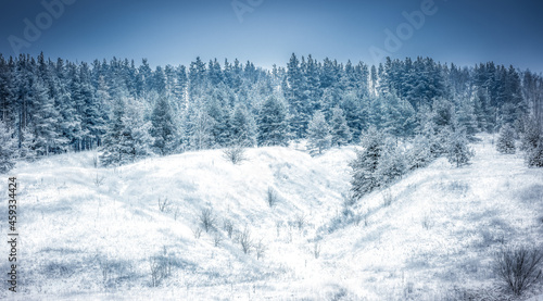 Photo Frosty winter, all the trees, bushes and grass growing on the hillside are cover