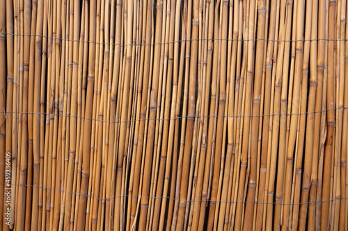 Cuadros en Lienzo The image of the wall created with bamboos as the background