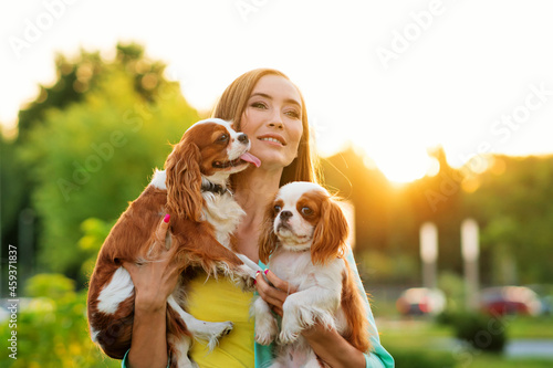 Canvas-taulu Caring breeder walks at sunset with two purebred pets