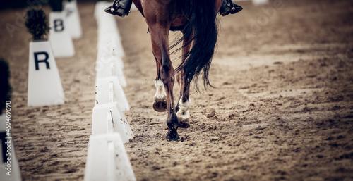 Equestrian sport Fototapet