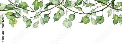 Tela Long seamless banner with hanging leaves on twigs