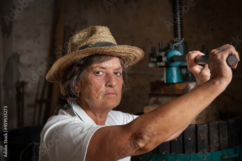 Wallpaper Mural Grape harvest: Close up portrait of old woman winemaker  working on a traditional winepress for the must pressing