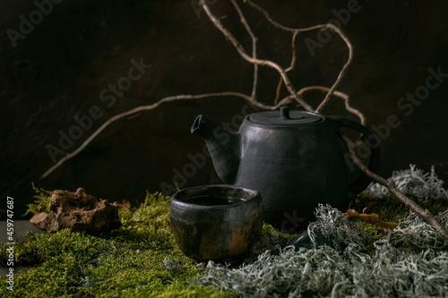 Fotografia Craft handmade ceramic teapot on moss as background
