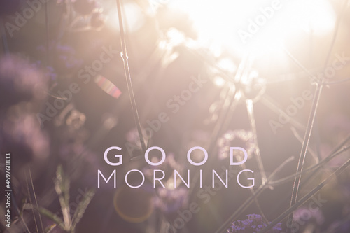 Fotografia, Obraz wunderschöner sonniger Septembertag, Text good morning