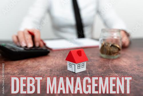 Tela Writing displaying text Debt Management