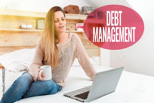Cuadros en Lienzo Conceptual display Debt Management