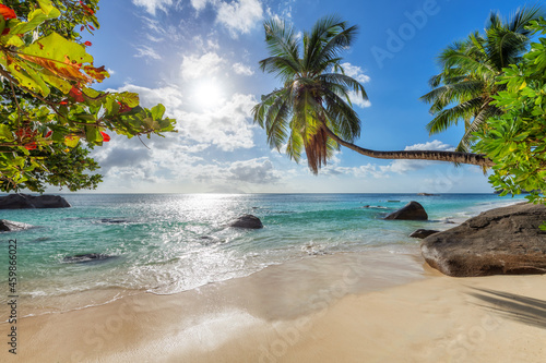 Obraz na plátně Tropical white sand beach with coco palms and the turquoise sea at sunset on Seychelles island