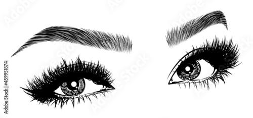 Fotografia, Obraz Illustration with woman's eyes, eyelashes and eyebrows