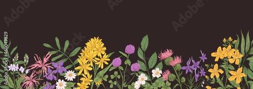Fotografie, Obraz Wild flower border