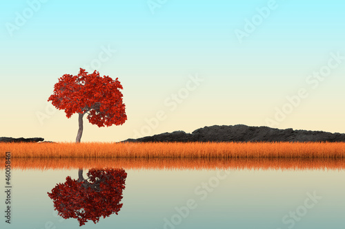 Photo Abstract Singl Autumn Tree standing in Long Grass on a River Bank