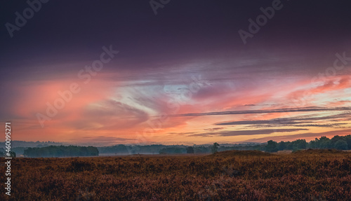 Fotografie, Obraz Sunrise with misty view of the veluwe valley in a typical Dutch moorland field