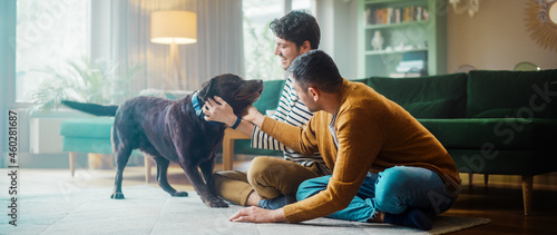 Fotografie, Obraz At Stylish Home Apartment: Happy Gay Couple Play with Their Dog, Gorgeous Brown Labrador Retriever